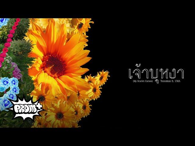 TOSSAKAN - เจ้าบุหงา Feat. UMA [Teaser 6/9]