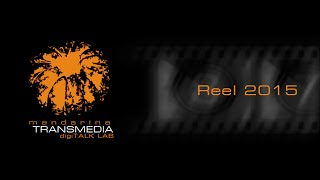 Reel mandarinaTransmedia All2015