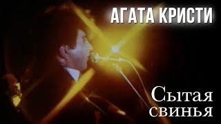 Агата Кристи — Сытая свинья (Официальный клип / 1991)