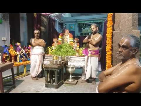 Nammazhwar Thiruvadi Thozhal (Sri Vedantha Desikar Devasthanam, Mylapore 17/01/2016) Vinnappam video