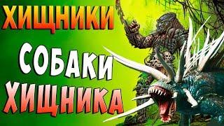 СОБАКИ ХИЩНИКОВ!!! Хищники Predators прохождение #4