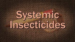 Systemic Insecticides - Family Plot