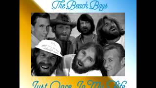 The Righteous Brothers & The Beach Boys - Just Once In My Life (MoolMix)