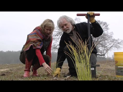 Rolling Stones' Chuck Leavell At Home On Twiggs County Tree Farm