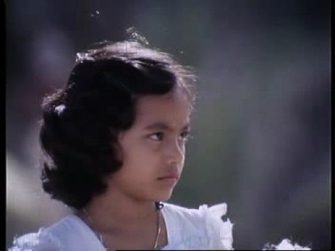 Chinna Chinna Kannirendu - Azhagiya Kanne (1982)
