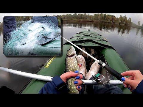 РАЗБОРКИ С БРАКОНЬЕРОМ. Рыбалка на спиннинг. АТАКИ щуки НА КОЛЕБЛО #207