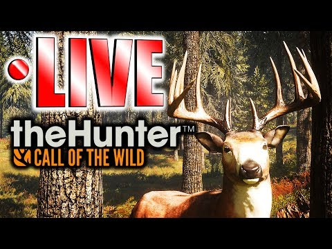 Herd Management & Diamond Search LIVE