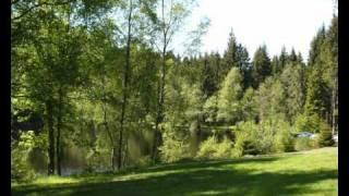 Camping Gademont Plage - Granges Sur Vologne - Vogezen
