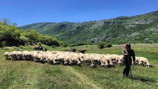 Lura, mrekullia që duhet shpëtuar - Fshatrat e Shqipërisë