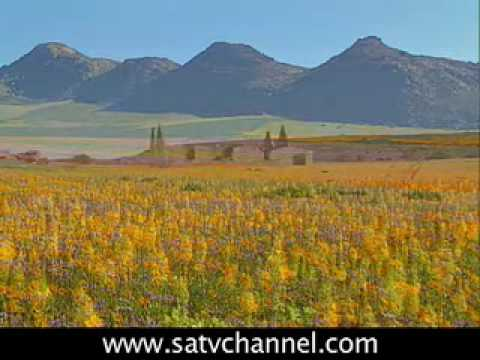 Northern Cape: SOUTH AFRICA TRAVEL