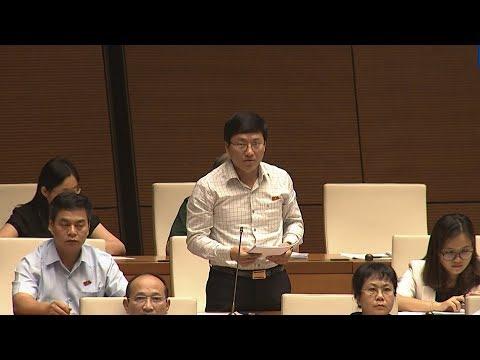 Quốc hội thảo luận về dự án Luật Bảo vệ và phát triển rừng (sửa đổi)