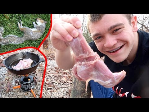 Squirrel Hunting Catch & Cook!
