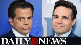 'Saturday Night Live' may have found their Anthony Scaramucci