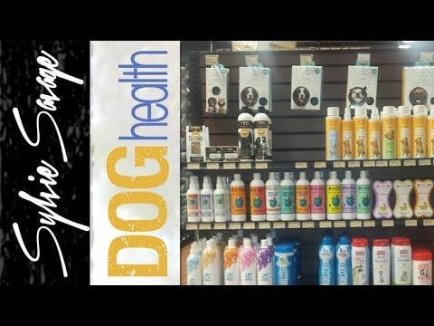 Dog Shampoo – How to pick the right one