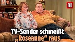 """Nach rassistischem Tweet: US-Sender ABC schmeißt """"Roseanne"""" aus Programm"""