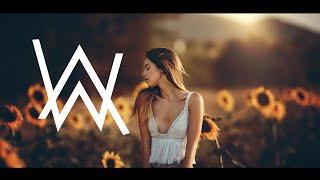 Alan Walker Style Mix - Winter Love (Song2020) 🎵