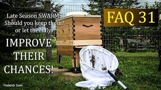 Beginner Beekeeping Frequently Asked Questions 31 is it too late to collect a swarm of honey bees