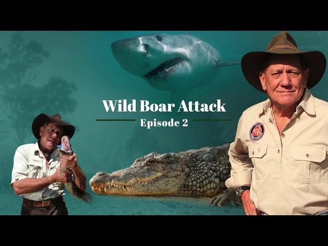 The Wildlife Man Podcast – Episode 2 - Wild Boar Attack