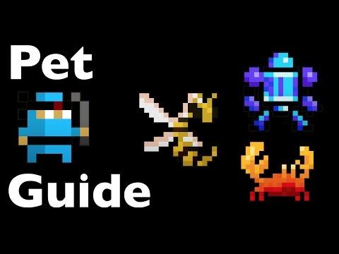 RotMG - Pet Guide