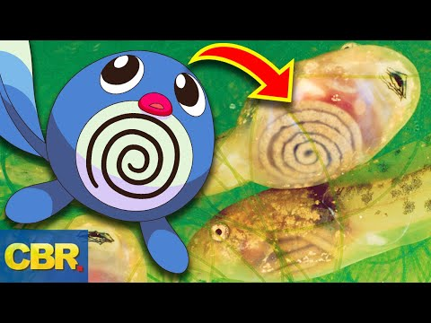 20 Pokemon And The Animals They're Based Off You Never Knew About