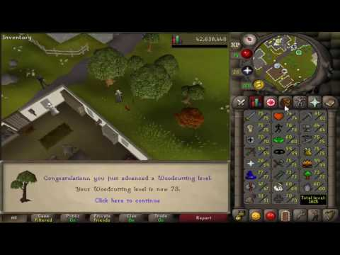 OSRS Hardcore Ironman #35 (Road to Rank 1) - Banking Construction/Fury Grind?