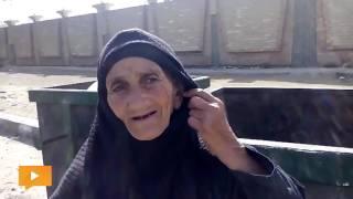 بالفيديو| «نجفة».. عجوز المنيا التي تلتقط الخبز من صناديق القمامة - الصعيد, مراسلون - البديل