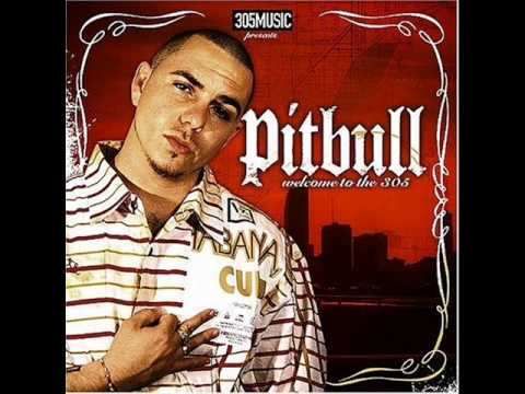 Pitbull Welcome to The 305 (Full Album)