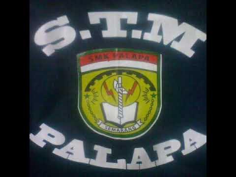 Stm Palapa