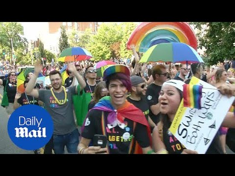 LGBT Community In Washington DC Attend Pride Parade - Daily Mail