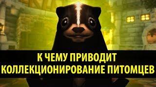К Чему Приводит Коллекционирование Питомцев