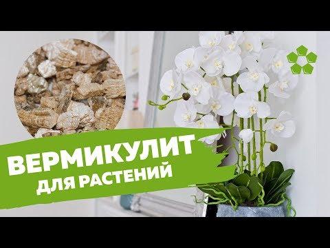 Вермикулит для растений + Как смешивать вермикулит с землей
