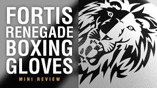 Fortis Renegade Boxing Gloves - Fight Gear Focus Mini Review