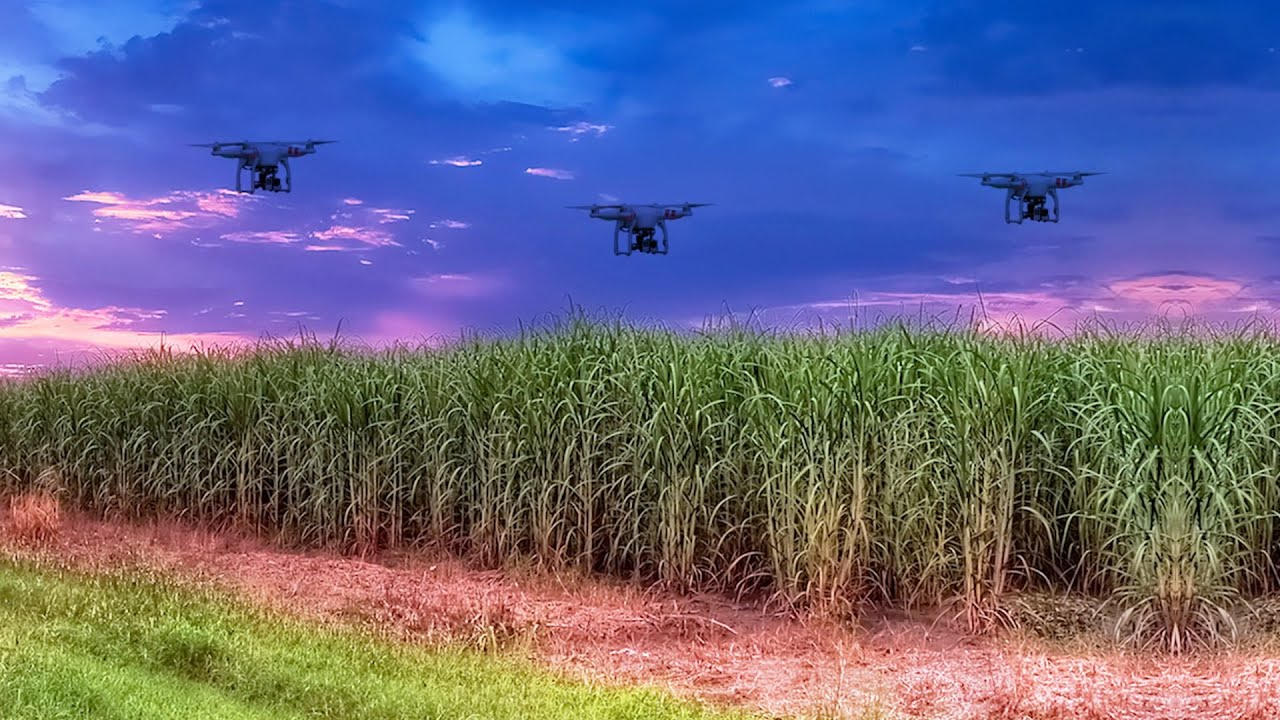 Agritech in India: How technology is changing the face of agriculture