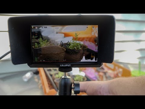 LILLIPUT A5 Monitor - Tiny 5 Inch W/ 4K Support, Headphone Jack, Lightweight