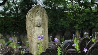 奈良市中院町にある元興寺(がんごうじ)は、南都七大寺の1つに数えられ...