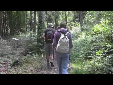 Jeûner en Suisse - www.isayoga.ch  - video 2012