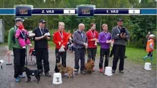 Ada-agility #16 Vaasan PiirM-kilpailut 1.9.2012