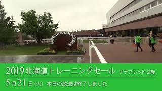 2019 北海道トレーニングセール 生中継