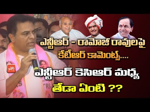 KTR Comments on NTR Ramoji Rao Relationship | NTR Vs KCR | Telangana CM KCR | Telugu Media | YOYO TV