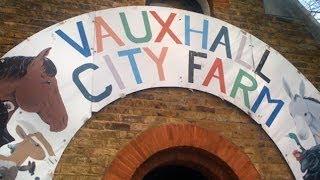 Introducing Vauxhall City Farm