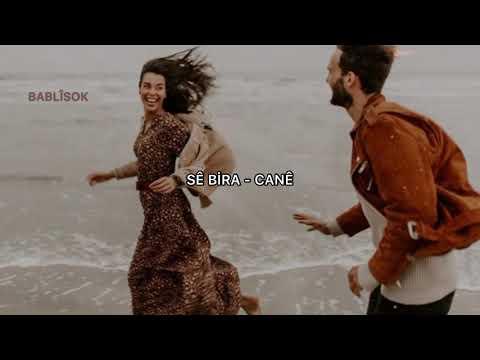 Se Bıra - Cane (Türkçe Çeviri)