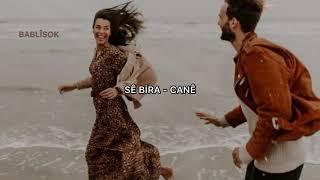 Se Bıra - Cane (Türkçe Çeviri) Resimi