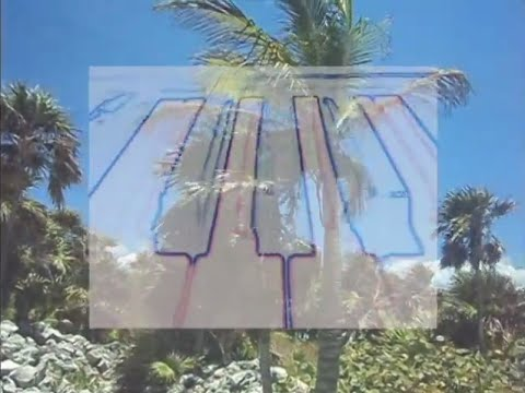 FAZE ISLAND /// Tropical Storm [Official Video]