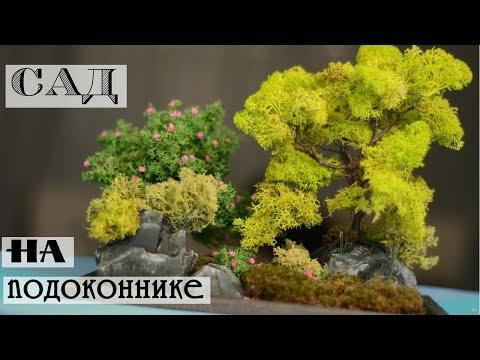 Миниатюрный сад своими руками/Объемная композиция из стабилизированного мха