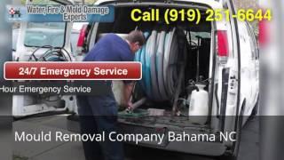 Mould Removal Company Bahama NC (919) 251-6644
