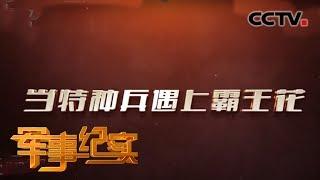 《军事纪实》 20190807 特种兵之携手同行| CCTV军事