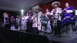 concierto de la banda de tlayacapan de cornelio santamara festival cuexcomate