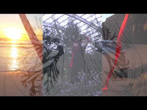 Joanna Bond -  Video Installation - Red Ribbon