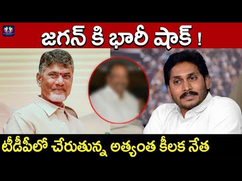 Big Shock To YS Jagan, Senior Leader Jumps From Party And To join In TDP | Andhra Pradesh | TFC News