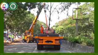 Tree Transplantation - Pune Metro's conscious vision towards environment conservation.